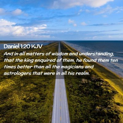 Picture 02 - Daniel 1:20 KJV - And in all matters of wisdom and understanding, - Bible Verse Picture