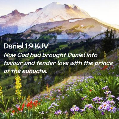 Picture 02 - Daniel 1:9 KJV - Now God had brought Daniel into favour and tender - Bible Verse Picture