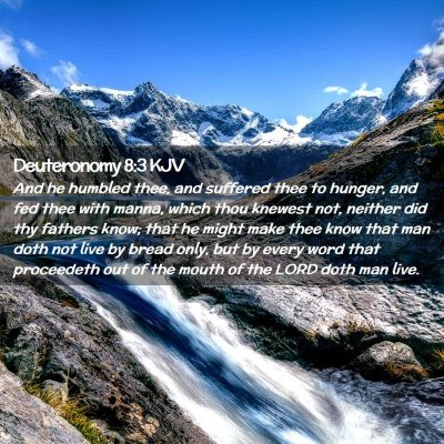 Picture 02 - Deuteronomy 8:3 KJV - And he humbled thee, and suffered thee to hunger, - Bible Verse Picture