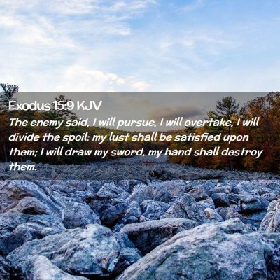 Picture 02 - Exodus 15:9 KJV - The enemy said, I will pursue, I will overtake, I - Bible Verse Picture