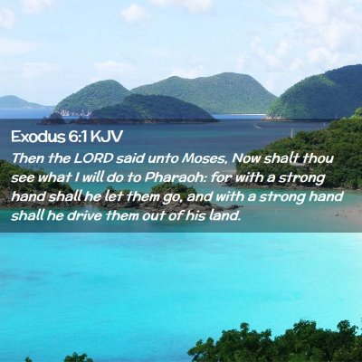 Picture 02 - Exodus 6:1 KJV - Then the LORD said unto Moses, Now shalt thou see - Bible Verse Picture