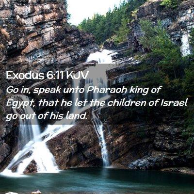 Picture 02 - Exodus 6:11 KJV - Go in, speak unto Pharaoh king of Egypt, that he - Bible Verse Picture