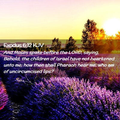 Picture 02 - Exodus 6:12 KJV - And Moses spake before the LORD, saying, Behold, - Bible Verse Picture