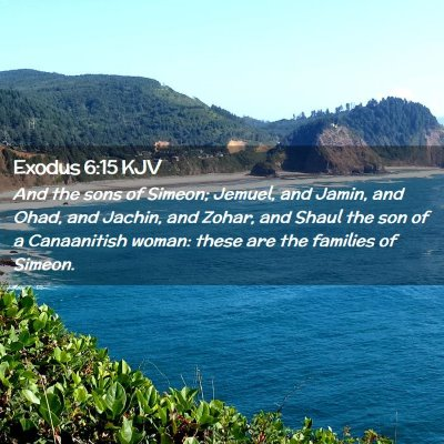 Picture 02 - Exodus 6:15 KJV - And the sons of Simeon; Jemuel, and Jamin, and - Bible Verse Picture