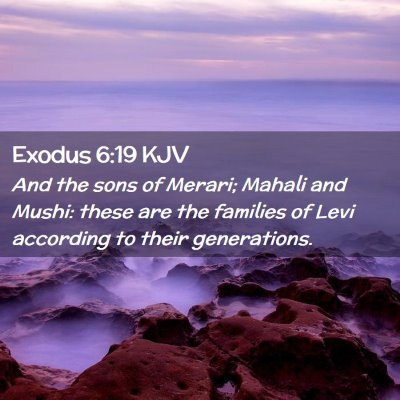 Picture 02 - Exodus 6:19 KJV - And the sons of Merari; Mahali and Mushi: these - Bible Verse Picture