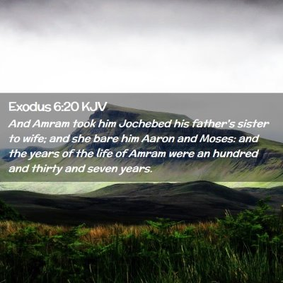 Picture 02 - Exodus 6:20 KJV - And Amram took him Jochebed his father's sister - Bible Verse Picture