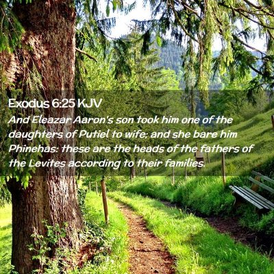 Picture 02 - Exodus 6:25 KJV - And Eleazar Aaron's son took him one of the - Bible Verse Picture