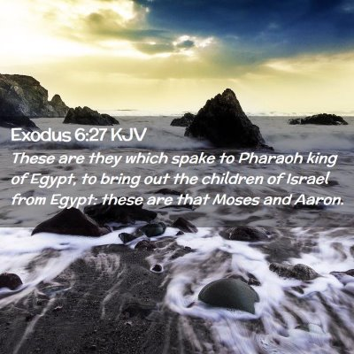 Picture 02 - Exodus 6:27 KJV - These are they which spake to Pharaoh king of - Bible Verse Picture