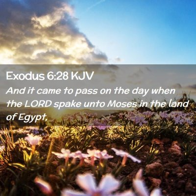 Picture 02 - Exodus 6:28 KJV - And it came to pass on the day when the LORD - Bible Verse Picture