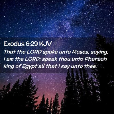 Picture 02 - Exodus 6:29 KJV - That the LORD spake unto Moses, saying, I am the - Bible Verse Picture