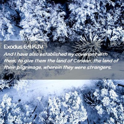 Picture 02 - Exodus 6:4 KJV - And I have also established my covenant with - Bible Verse Picture