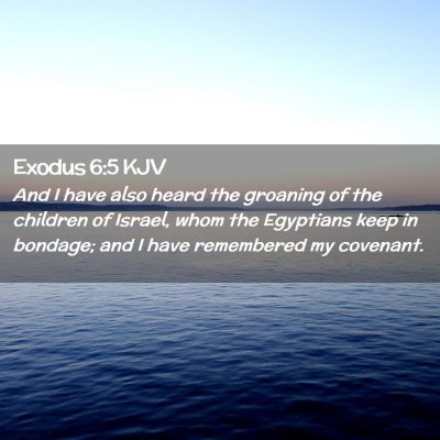 Picture 02 - Exodus 6:5 KJV - And I have also heard the groaning of the - Bible Verse Picture