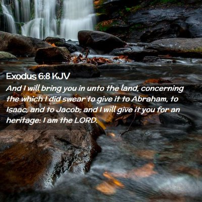 Picture 02 - Exodus 6:8 KJV - And I will bring you in unto the land, concerning - Bible Verse Picture