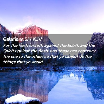 Picture 02 - Galatians 5:17 KJV - For the flesh lusteth against the Spirit, and the - Bible Verse Picture