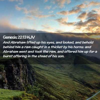 Picture 02 - Genesis 22:13 KJV - And Abraham lifted up his eyes, and looked, and - Bible Verse Picture