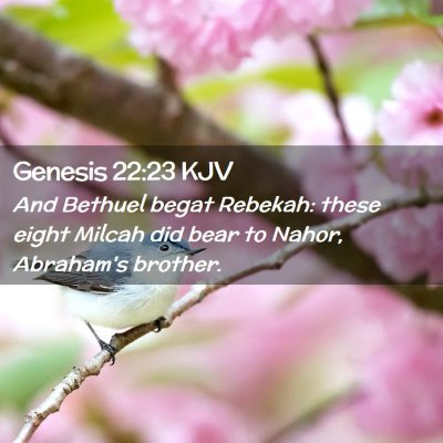 Picture 02 - Genesis 22:23 KJV - And Bethuel begat Rebekah: these eight Milcah did - Bible Verse Picture