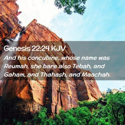 Picture 02 - Genesis 22:24 KJV - And his concubine, whose name was Reumah, she - Bible Verse Picture