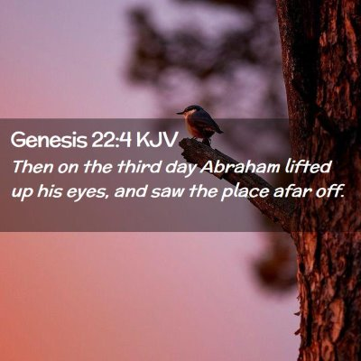 Picture 02 - Genesis 22:4 KJV - Then on the third day Abraham lifted up his eyes, - Bible Verse Picture