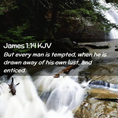 Picture 02 - James 1:14 KJV - But every man is tempted, when he is drawn away - Bible Verse Picture
