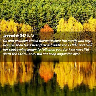 Picture 02 - Jeremiah 3:12 KJV - Go and proclaim these words toward the north, and - Bible Verse Picture