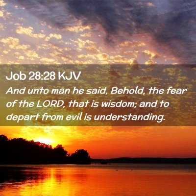 Picture 02 - Job 28:28 KJV - And unto man he said, Behold, the fear of the - Bible Verse Picture