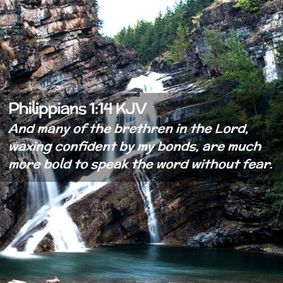 Picture 02 - Philippians 1:14 KJV - And many of the brethren in the Lord, waxing - Bible Verse Picture
