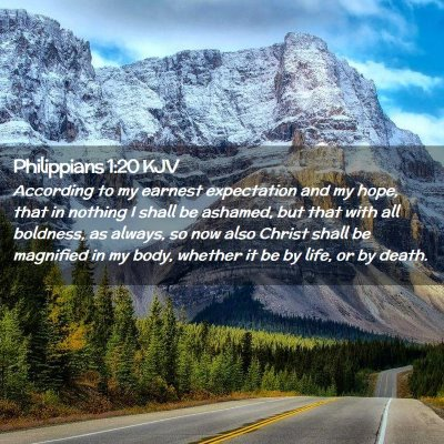 Picture 02 - Philippians 1:20 KJV - According to my earnest expectation and my hope, - Bible Verse Picture