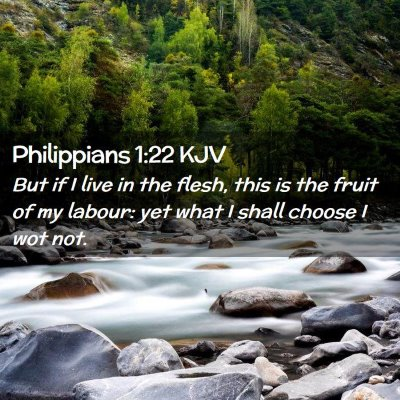 Picture 02 - Philippians 1:22 KJV - But if I live in the flesh, this is the fruit of - Bible Verse Picture