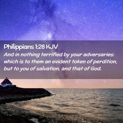 Picture 02 - Philippians 1:28 KJV - And in nothing terrified by your adversaries: - Bible Verse Picture