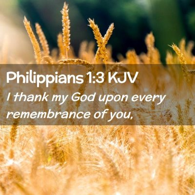 Picture 02 - Philippians 1:3 KJV - I thank my God upon every remembrance of - Bible Verse Picture