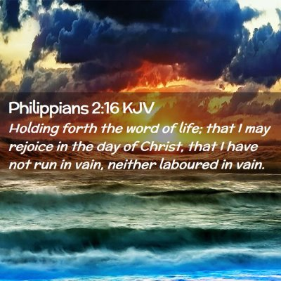 Picture 02 - Philippians 2:16 KJV - Holding forth the word of life; that I may - Bible Verse Picture
