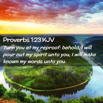 Picture 02 - Proverbs 1:23 KJV - Turn you at my reproof: behold, I will pour out - Bible Verse Picture
