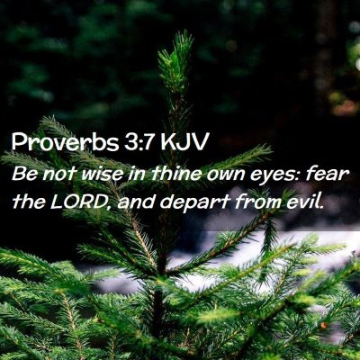 Picture 02 - Proverbs 3:7 KJV - Be not wise in thine own eyes: fear the LORD, and - Bible Verse Picture