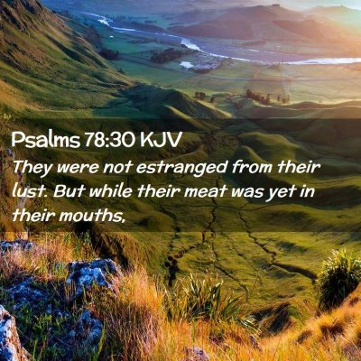Picture 02 - Psalms 78:30 KJV - They were not estranged from their lust. But - Bible Verse Picture