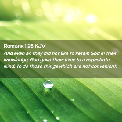 Picture 02 - Romans 1:28 KJV - And even as they did not like to retain God in - Bible Verse Picture