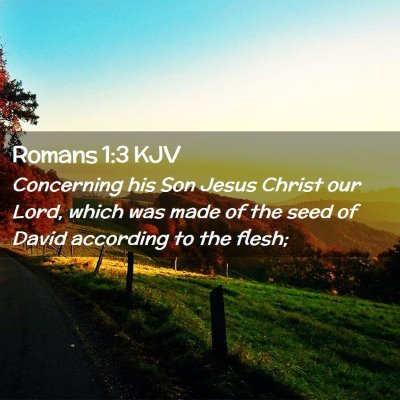 Picture 02 - Romans 1:3 KJV - Concerning his Son Jesus Christ our Lord, which - Bible Verse Picture