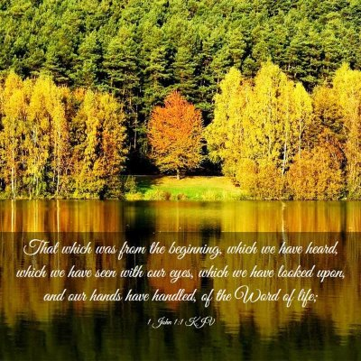 Picture 03 - 1 John 1:1 KJV - That which was from the beginning, which we have - Bible Verse Picture