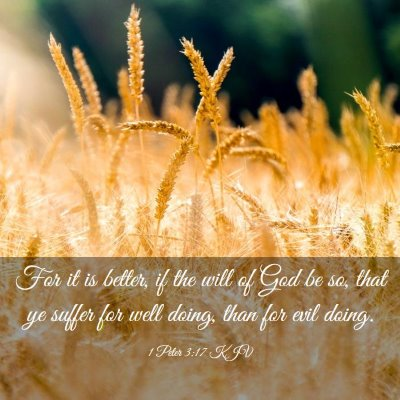 Picture 03 - 1 Peter 3:17 KJV - For it is better, if the will of God be so, that - Bible Verse Picture