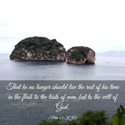 Picture 03 - 1 Peter 4:2 KJV - That he no longer should live the rest of his - Bible Verse Picture