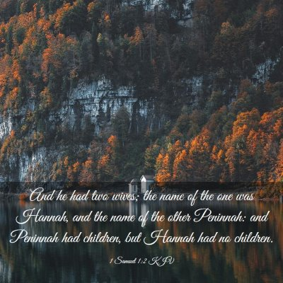Picture 03 - 1 Samuel 1:2 KJV - And he had two wives; the name of the one was - Bible Verse Picture