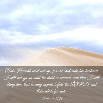 Picture 03 - 1 Samuel 1:22 KJV - But Hannah went not up; for she said unto her - Bible Verse Picture
