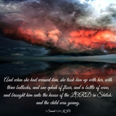 Picture 03 - 1 Samuel 1:24 KJV - And when she had weaned him, she took him up with - Bible Verse Picture