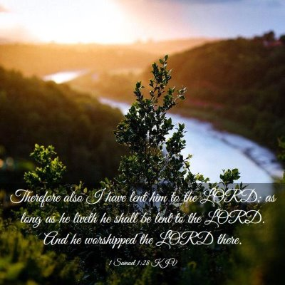 Picture 03 - 1 Samuel 1:28 KJV - Therefore also I have lent him to the LORD; as - Bible Verse Picture