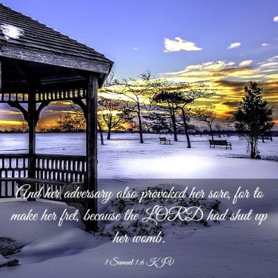 Picture 03 - 1 Samuel 1:6 KJV - And her adversary also provoked her sore, for to - Bible Verse Picture