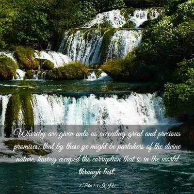 Picture 03 - 2 Peter 1:4 KJV - Whereby are given unto us exceeding great and - Bible Verse Picture