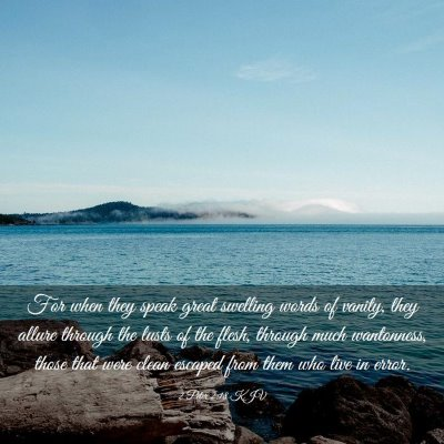 Picture 03 - 2 Peter 2:18 KJV - For when they speak great swelling words of - Bible Verse Picture
