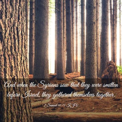 Picture 03 - 2 Samuel 10:15 KJV - And when the Syrians saw that they were smitten - Bible Verse Picture