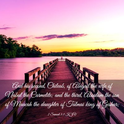 Picture 03 - 2 Samuel 3:3 KJV - And his second, Chileab, of Abigail the wife of - Bible Verse Picture