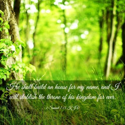 Picture 03 - 2 Samuel 7:13 KJV - He shall build an house for my name, and I will - Bible Verse Picture