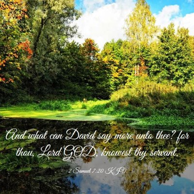 Picture 03 - 2 Samuel 7:20 KJV - And what can David say more unto thee? for thou, - Bible Verse Picture